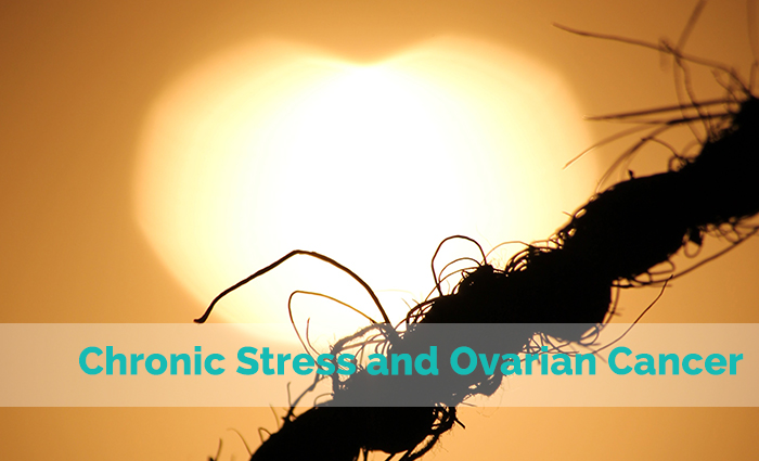 Chronic Stress and Ovarian Cancer Progression